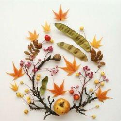 - Гербарий: выбор растений, сушка, оформление, гербарий в школу, детские поделки